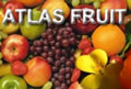 Atlas Fruit - Tsiaousis Export
